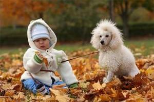 Как животные влияют на детей