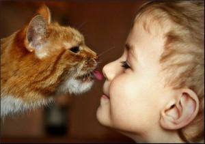 Определяем тип контактности ребенка